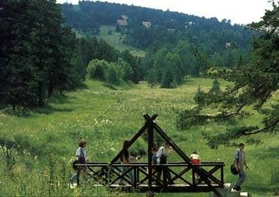 Sve čari Srbije 3216_Divcibare,%20Srbija